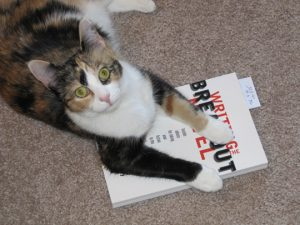 Tortoiseshell over white shorthair cat sitting on a copy of Writing the Breakout Novel